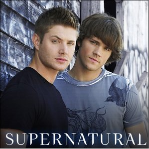 1. I ABSOLUTELY Liebe SUPERNATURAL! <3333333333333 2. Yoshi is my fav game character 3. I am robinpelt in branchclan 4. I Liebe Schokolade 5. I play the klarinette