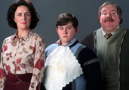 Hmm. I'm sure everything went back to normal but the Dursley's had a bit zaidi respect for Harry after everything that happened. I'm sure Harry and Dudley had an okay relationship after what happened in DH. I imagine Dudley and Harry's kids saw each other. I also agree that they woudln't like it..I mean come on it's Dudley's children XD.