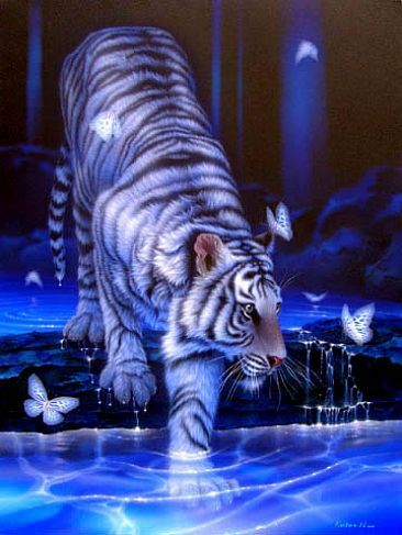 A white tiger.They're so beautiful.