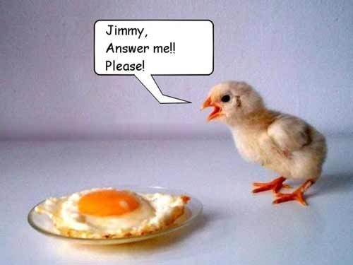 I say chicken.