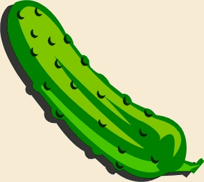 cornichon, pickle POWER !!!! ou power to the pickle!