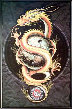 A powerful, scaly beast of old times. Very wise, but a misunderstood creature. A bit of Chinese infulence. A guardian of great and terrbile knowledge. A protector.