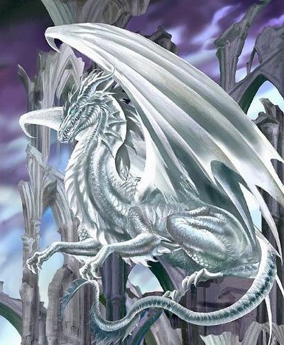 the beautiful, mystical White Dragon