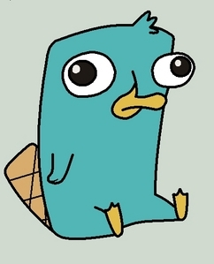 PERRY THE PLATYPUS!!!