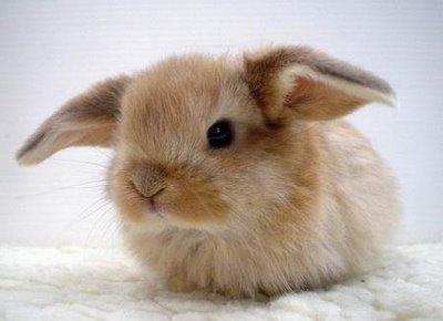 Here's a cute pic too!!