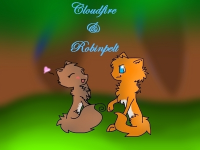 making somebody else happy is a good way to be happy and آپ see their smile and آپ get a heartwarming smile and u feel better آپ could help me! : can u draw this? Cloudfire-a flame colored tom with a white under belly and sky blue eyes Robinpelt-a beautiful brown she-cat with a white belly and amber eyes they are mates. XD somethin lik this, :