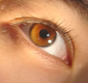 Uh...they are not really that special,but...my eyes are kind of like the color in the picture! They are a light brown when in the sun,but when there isn't much light they look like pure black with a tint of brown! ^_^ (Ps.Those aren't my eyes,but they are very similar to them!)