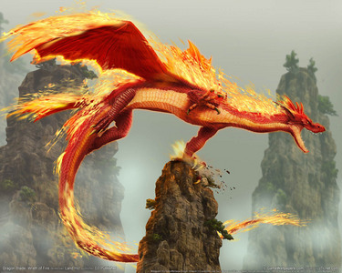 I WOULD SO l'amour A DRAGON AS A PET!!!!