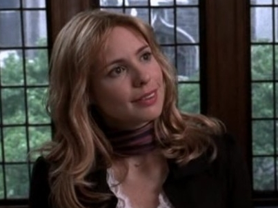 Nicole Wallace, my preferito Televisione villian (yes I have a favorite). She was a serial killer on Law & Order: Criminal Intent (I once convinced Cleverbot I was her).