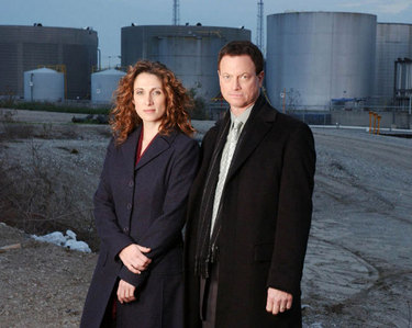 I've got two: 1. Melina Kanakaredes 2. actor, singer 3. CSI: NY 1. Gary Sinise 2. actor, has a band 3. CSI: NY