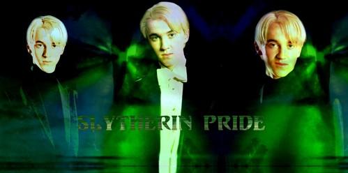 i got Slytherin: 82 (yay) Gryffindor: 61 (man) Ravenclaw: 52 Hufflepuff: 38 yay, im a Slytherin!