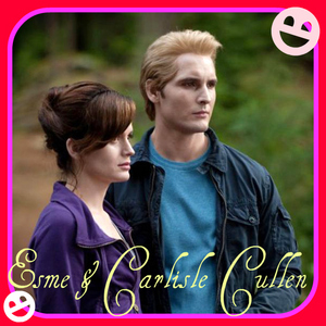 i loved the all of it but i loved the part where Carlisle ad Esme help each other out at the fightin bit!!!!!!!! <3