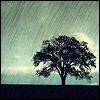 Rain, rain, go away.....
