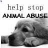 People aren't the only ones who suffer! Please help stop animal abuse:'(