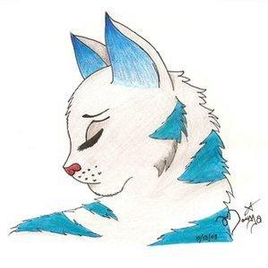 Bluefrost's sorrow