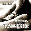 Team Twilight