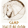 CAMP HALF-BLOOD!!!!