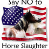 Against Horse Slaughter!