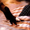 2008 Presidential Election USA