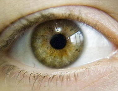 I saw on the internet that her eyes are hazel..  :|  like this: