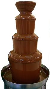 True!! TPBM is a chocoholic and just totally drooled at this chocolate fountain: