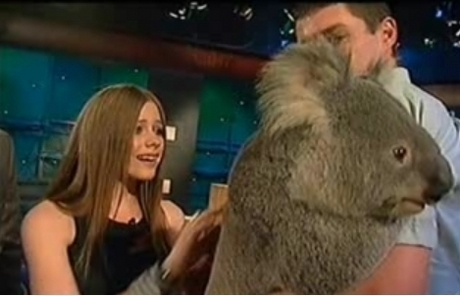 Hmmm actually she isnt holding but i hope it works!! she is just touching that koala! well this is th