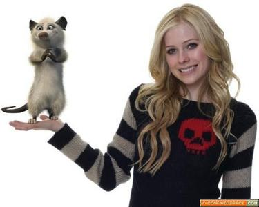 well i didn't find a picture with a cat..but i found this..it's from the movie over the hedge:P..DO U