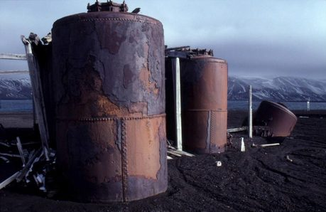 This is what the people used to kill penguins in. They are called pingüino, pingüino de Digesters. They are still h