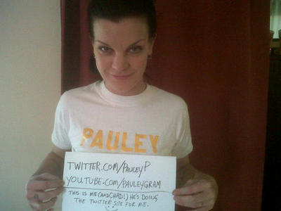 Pauley Perrette has spent the last few days trying out her new Twitter account and doing a fundraiser
