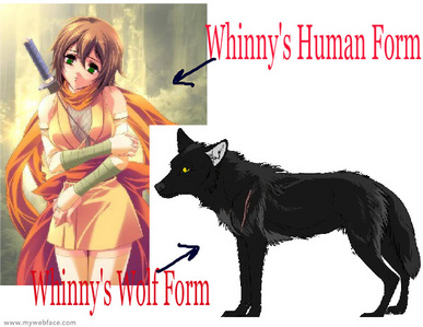 I'm bored so does anyone wanna roleplay?   Name: Whinny  Female  Type: Werewolf (Jet Black with