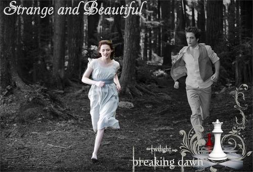 벨라 스완 바탕화면 entitled Bella Swan\Cullen xxx