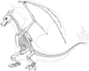 Charizard's Skeleton