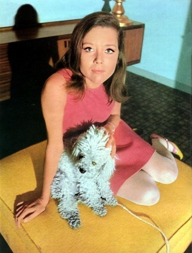 Diana Rigg and dog