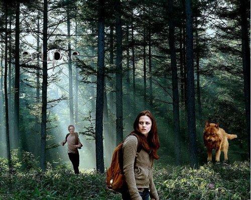 Edward, Bella & Jacob