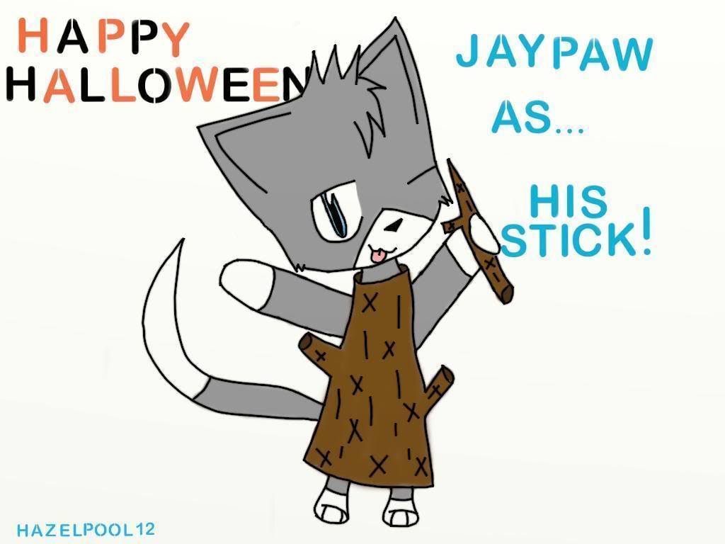 jaypaw x stick related keywords jaypaw x stick long tail
