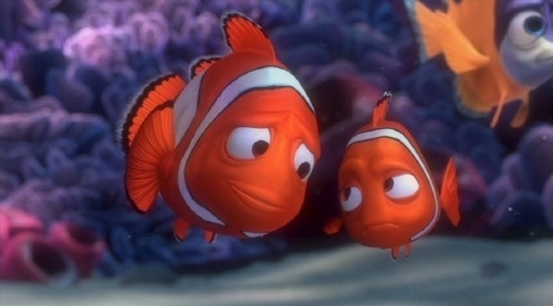 Nemo and Father pescado