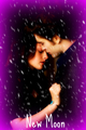 New Moon*Bella&Edward - twilight-series photo
