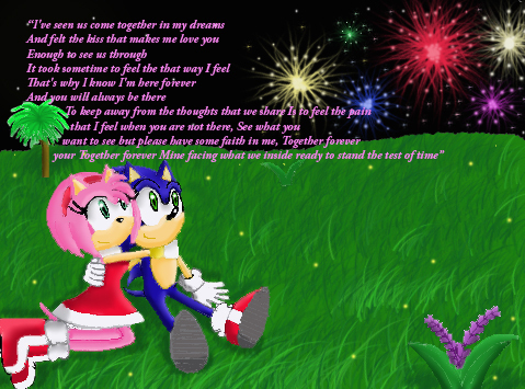 Sonamy Fireworks