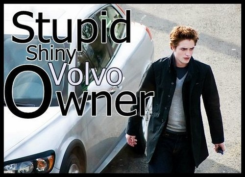 Stupid shiny volvo owner =]