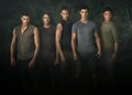 The wolfpack - twilight-series photo