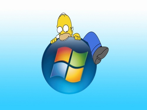 homer and windows