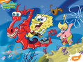 spongebob-squarepants - spongebob squarepants wallpapers wallpaper