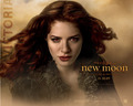 victoria new moon - victoria-from-the-twilight-books photo