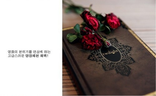 Amazing Korean Twilight Notebook