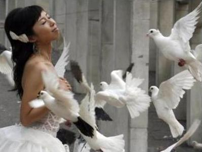 Bride and Doves