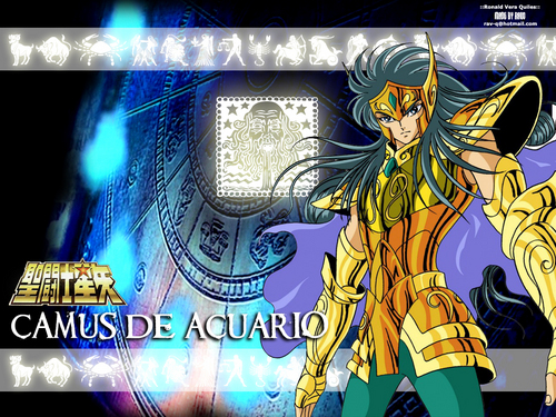 Saint Seiya (Knights of the Zodiac) images Camus the Aquario HD wallpaper and background photos