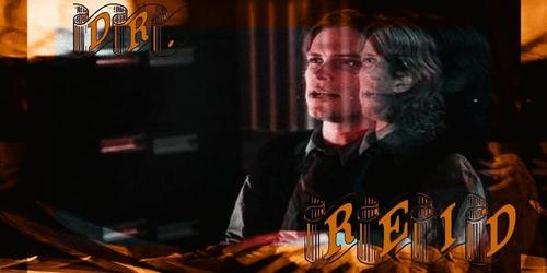 Dr. Reid