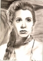 Leia - princess-leia-organa-solo-skywalker fan art