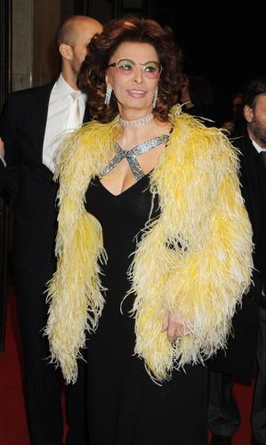 Sophia Loren (HQ)