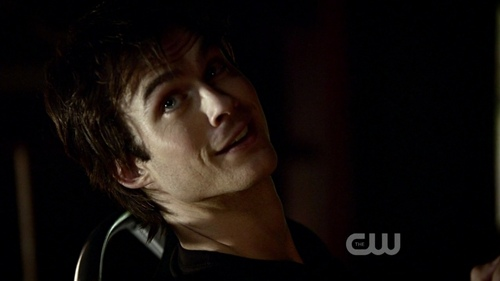 The Vampire Diaries - damon-salvatore Photo